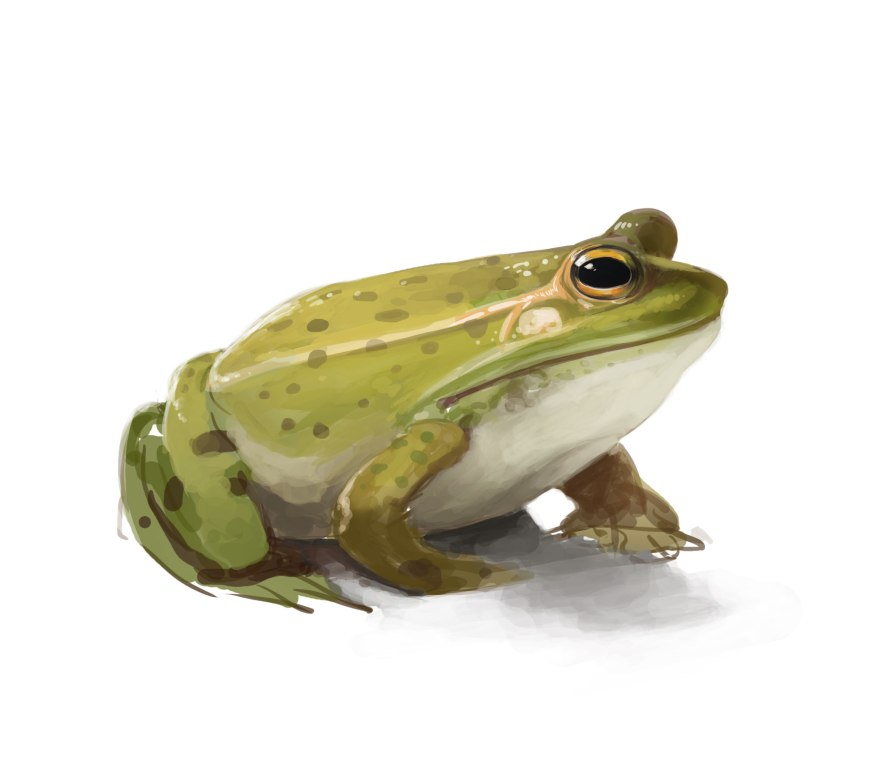 frog-painting